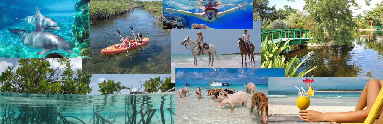 Bahamas Shuttle Boat Bahamas Fast Ferry Day Trip 954-969-0069 only $73